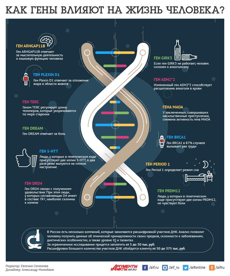 как гены влияют на жизнь человека