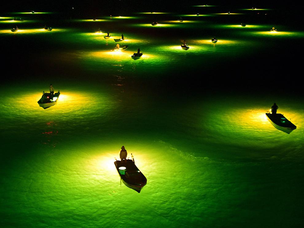 Ночные рыболовы, Япония