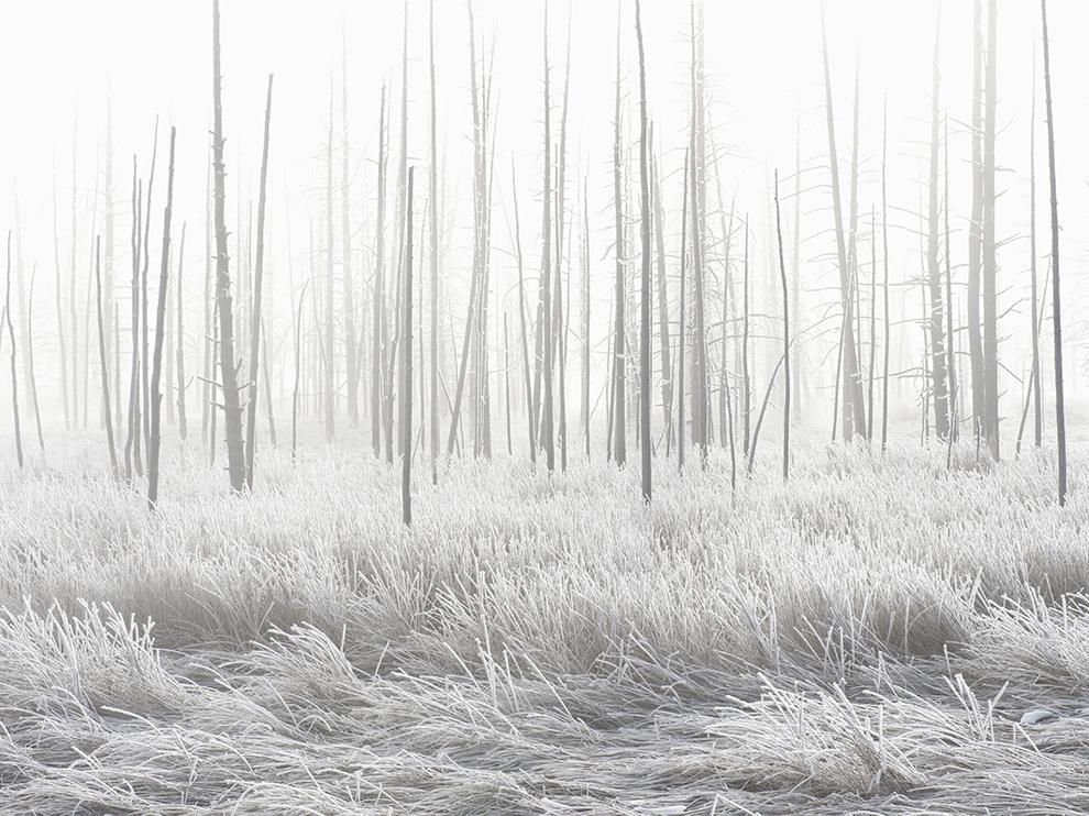 """Национальный парк """"Йеллоустон"""", США"""